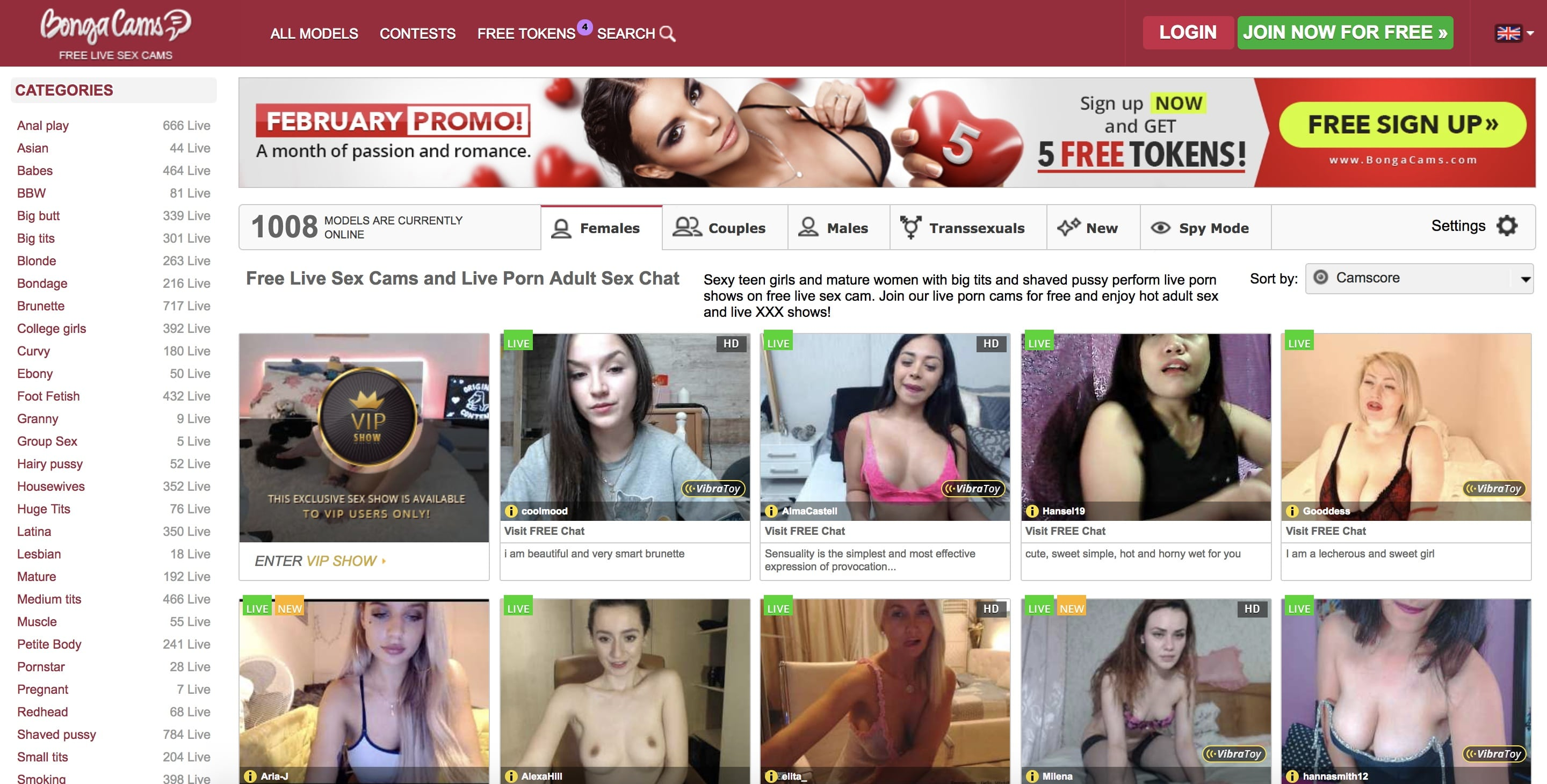 Adult webcams no credit card